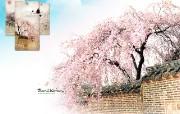 韩国旅游局官方旅游景点壁纸 韩国旅游景点 德寿宫 Korea Travel Deoksugung Palace 韩国官方旅游景点壁纸 人文壁纸