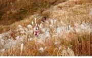韩国旅游局官方旅游景点壁纸 韩国旅游圣地 江原道旌善郡 Korea Travel Mt Mindungsan Jeongseon Gangwon do Province 韩国官方旅游景点壁纸 人文壁纸