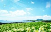 韩国风景 济州道旧左邑兔子岛 韩国映像馆韩国旅游宣传壁纸 人文壁纸