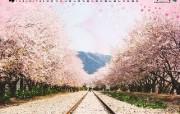 韩国风光 庆南镇海 韩国映像馆韩国旅游宣传壁纸 人文壁纸