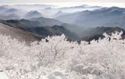 韩国雪景 江原道太白 韩国映像馆韩国旅游宣传壁纸 人文壁纸