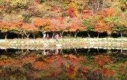 韩国风光 全南长城白羊寺 韩国映像馆韩国旅游宣传壁纸 人文壁纸