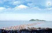 韩国风光 珍岛摩西奇迹 韩国映像馆韩国旅游宣传壁纸 人文壁纸