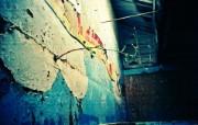 Lomography LOMO摄影 城市角落 顽强的生命 Lomo 随拍图片 Lomo风格宽屏壁纸 LOMO随拍城市街景 人文壁纸