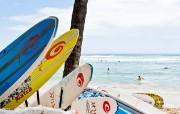 品味城市韵味 旅游随拍 夏威夷海滩桌面壁纸 品味城市韵味旅游随拍 人文壁纸