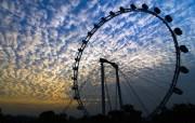 世界最大的摩天轮 新加坡摩天观景轮壁纸 新加坡摩天轮桌面壁纸 世界最大的摩天轮新加坡摩天观景轮壁纸 人文壁纸