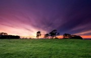 天堂之国 新西兰如画风光壁纸 1920 1200 New Zealand Beautiful Morning Sunrise at Cornwall Park Auckland New Zealand 新西兰风光第二集 人文壁纸
