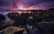 天堂之国 新西兰如画风光壁纸 1920 1200 New Zealand Rocky Sunrise Sunrise at Otuataua Stonefields Auckland New Zealand 新西兰风光第二集 人文壁纸