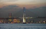美丽东京湾彩虹大桥 夜色下的彩虹桥 Japan Travel Japan Tokyo Rainbow Bridge 夜色下的东京彩虹桥 人文壁纸