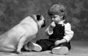 人与狗 1 19 人与狗 人物壁纸