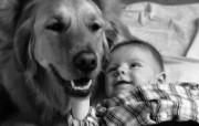人与狗 2 14 人与狗 人物壁纸