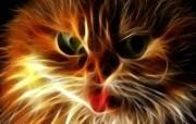 光线描绘猫科动物壁纸 壁纸5 光线描绘猫科动物壁纸 设计壁纸