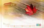 韩国11月壁纸 设计壁纸