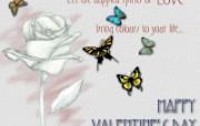 情人专用 情人节专题高清心形壁纸 三 壁纸76 情人专用:情人节专题 设计壁纸