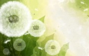 矢量艺术花纹花朵 宽屏壁纸 壁纸5 矢量艺术花纹花朵 宽 设计壁纸