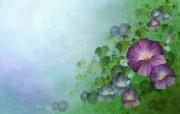 矢量艺术花纹花朵 宽屏壁纸 壁纸14 矢量艺术花纹花朵 宽 设计壁纸