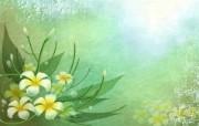 矢量艺术花纹花朵 宽屏壁纸 壁纸24 矢量艺术花纹花朵 宽 设计壁纸
