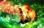 野生生物 幻彩荧光宽屏壁纸 壁纸7 野生生物 幻彩荧光宽 设计壁纸