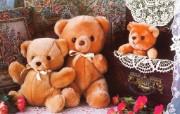 百岁小熊泰迪熊 Teddy bears二 摄影壁纸