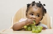 可爱黑人宝宝 国外儿童摄影壁纸 国外儿童摄影壁纸第二辑 摄影壁纸