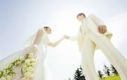 新郎 新娘 蓝天 白色婚礼摄影壁纸 花园里的白色婚礼婚纱摄影壁纸 摄影壁纸