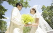 Garden Wedding Photography Bride and groom with flowers 花园里的白色婚礼婚纱摄影壁纸 摄影壁纸