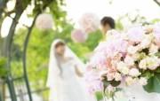 花园里的白色婚礼摄影壁纸 花园里的白色婚礼婚纱摄影壁纸 摄影壁纸