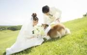 新娘新郎与狗狗 花园里的婚礼图片 花园里的白色婚礼婚纱摄影壁纸 摄影壁纸