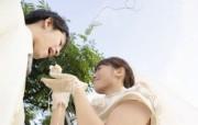 新娘新郎喂蛋糕 花园里的婚礼图片 花园里的白色婚礼婚纱摄影壁纸 摄影壁纸