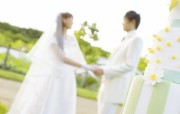 Wedding Photography White wedding Garden wedding 花园里的白色婚礼婚纱摄影壁纸 摄影壁纸