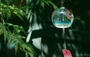 日式静物夏季静物摄影 摄影壁纸