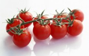 硕果累累番茄篇 摄影壁纸