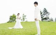草地上的新娘新郎 公园里的白色婚礼图片图片壁纸 我们结婚吧 摄影壁纸