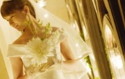 待嫁的新娘 公园里的白色婚礼 婚纱摄影壁纸图片壁纸 我们结婚吧 摄影壁纸