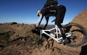 2008环法自行车赛意大利天然气车队LIQUIGAS赞助品牌CANNONDALE 体育壁纸