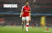 英超 2009 10赛季 Arsenal 阿森纳壁纸 Cesc Fabregas 200910赛季 Arsenal 阿森纳壁纸 体育壁纸