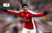 英超 2009 10赛季 Arsenal 阿森纳壁纸 Carlos Vela 200910赛季 Arsenal 阿森纳壁纸 体育壁纸