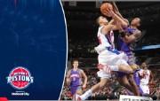 NBA 桌面壁纸 April 2 vs Suns 桌面壁纸 200910赛季底特律活塞常规赛 体育壁纸
