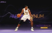 NBA 2009 10赛季洛杉矶湖人桌面壁纸 Andrew Bynum桌面壁纸 200910赛季洛杉矶湖人壁纸 体育壁纸