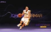 NBA 2009 10赛季洛杉矶湖人桌面壁纸 Jordan Farmar桌面壁纸 200910赛季洛杉矶湖人壁纸 体育壁纸