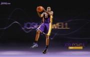 NBA 2009 10赛季洛杉矶湖人桌面壁纸 Josh Powell桌面壁纸 200910赛季洛杉矶湖人壁纸 体育壁纸