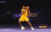NBA 2009 10赛季洛杉矶湖人桌面壁纸 Ron Artest桌面壁纸 200910赛季洛杉矶湖人壁纸 体育壁纸