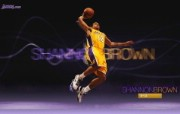 NBA 2009 10赛季洛杉矶湖人桌面壁纸 Shannon Brown桌面壁纸 200910赛季洛杉矶湖人壁纸 体育壁纸