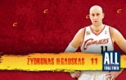 2010季后赛NBA壁纸 克里夫兰骑士 壁纸6 2010季后赛NBA 体育壁纸