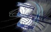 英超联赛球队 官方 Blues Globe 2壁纸下载 Birmingham 伯明翰壁纸 体育壁纸