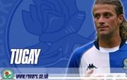 英超联赛球队 官方Blackburn 布莱克本壁纸 TUGAY桌面壁纸 Blackburn 布莱克本官方壁纸 体育壁纸