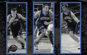 丹佛掘金队200809赛季官方桌面壁纸 体育壁纸