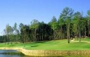 高贵的草地高尔夫 体育壁纸