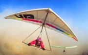 滑翔伞壁纸 体育壁纸