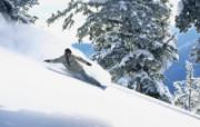 户外运动系列壁纸之滑雪与冲浪 体育壁纸